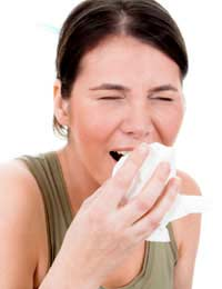 Hay Fever Immune System Protection
