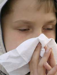Global Warming Hay Fever Allergy Asthma
