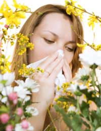 Hay Fever Irritation Symptoms Common