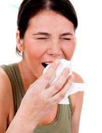 Hay Fever Myths Caused Pollinating