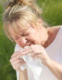 Skin Tests hayfever skin Prick Tests