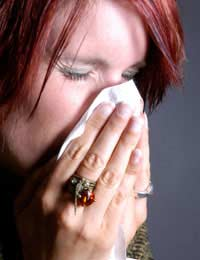 Perennial Rhinitis Hay Fever Allergic